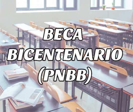 Beca bicentenario o PNBB