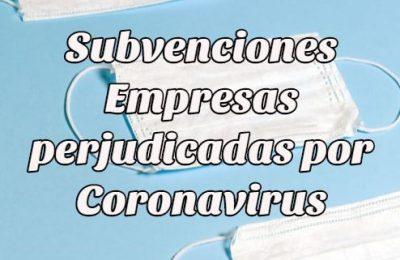subvenviones empresas coronavirus
